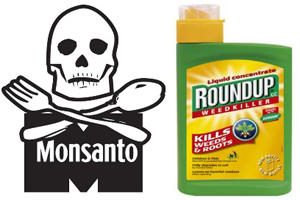monsanto roundsup International agencies, us and foreign regulators and agribusiness giant monsanto have already evaluated claims that the active ingredient in monsanto's widely used.