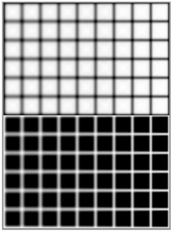 ilusion-1-610x820