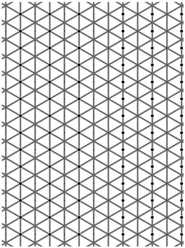 ilusion-optica-3-610x818